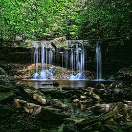 Allen Beatty - Ricketts Glen S P - Oneida Falls