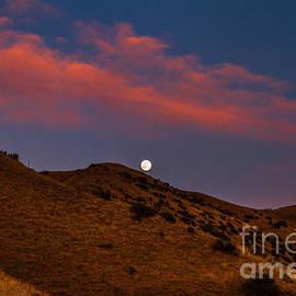 Robert Bales - Rising Moon