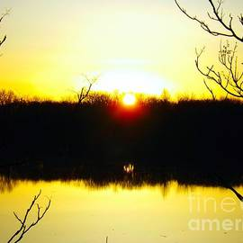 Robyn King - Rising Sun On The Delaware River