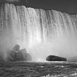 Lucinda Walter - Rivers of Living Water