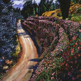 David Lloyd Glover - Road To Paradise