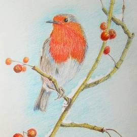 Geraldine Leahy - Robin among the Berries
