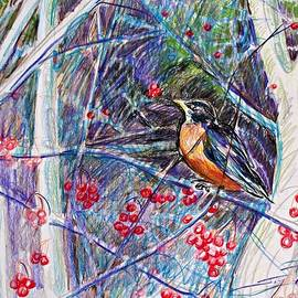 Joy Nichols - Robin In The Crab Apple Trees Sketch