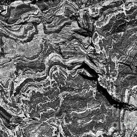 Les Palenik - Rock Veins - monochrome
