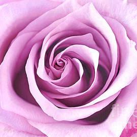 Regina Geoghan - Rockfire Rose Portrait