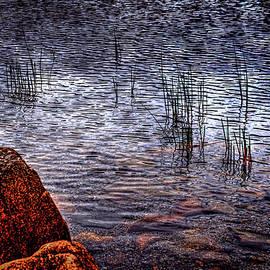 Roger Passman - Rocks and Reeds at Jordan Pond