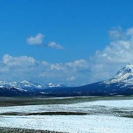 Tracey Vivar - Rocky Mountain Winter
