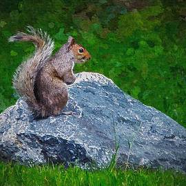 Brian Wallace - Rocky The Squirrel - Paint FX