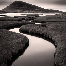 Dave Bowman - Northton Saltmarsh