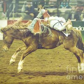 Janice Rae Pariza - Rodeo Moments