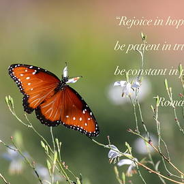 Ruth Jolly - Romans chapter 12 verse 12