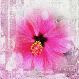 Vesna Martinjak - Romantic hibiscus