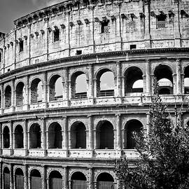ROME Colosseum - Melanie Viola