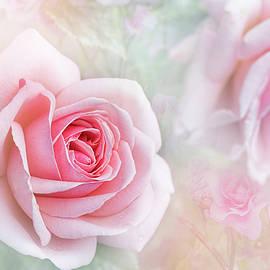 Jacky Parker - Rosa