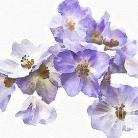Gene Healy - Rosa canina - watercolour