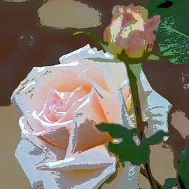 Pamela Cooper - Rose 112