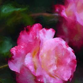 Pamela Cooper - Rose 355