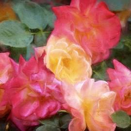 Pamela Cooper - Rose 357