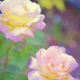 Pamela Cooper - Rose 361