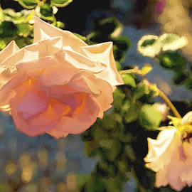 Kay Brewer - Rose Aglow with Art
