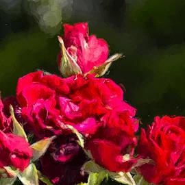 Leif Sohlman - Rose bouwuet