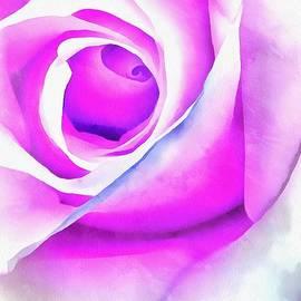 Krissy Katsimbras - Rose Essence