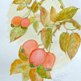 Anna Folkartanna Maciejewska-Dyba  - Wild Rose in the Fall
