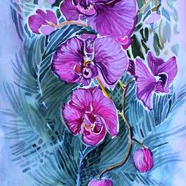 Mindy Newman - Rose Orchids