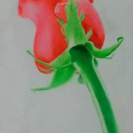Bettye Jo Brooks - Rose without Thorns