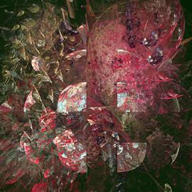 Mark Bowden - Roses