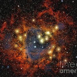 Chuck Caramella - Rosette Nebula  ...