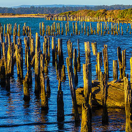 Rotting Pier Posts - Garry Gay