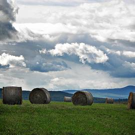 Joy Nichols - Round Bales Under A Cloudy Sky