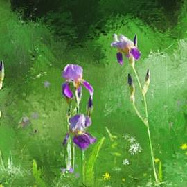 Debra Baldwin - Row of irises