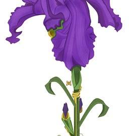 Anne Norskog - Royal Iris II