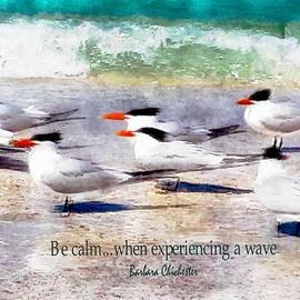 Barbara Chichester - Royal Tern Meditation