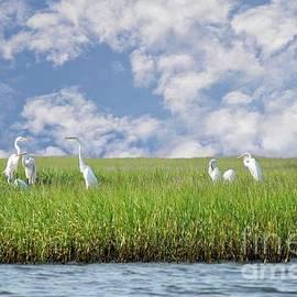 Benanne Stiens - RSVP Egrets Only