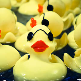 Colleen Kammerer - Rubber Duckie