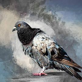 Cyndy Doty - Ruffled Feathers
