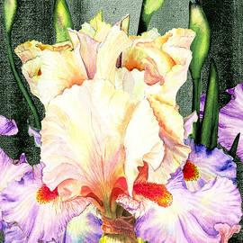 Irina Sztukowski - Ruffles Ruffles Iris Garden