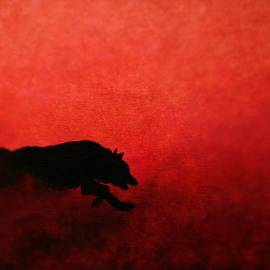 Olga Zavgorodnya - Running Wolf