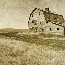 Nina Stavlund - Rural Romance..