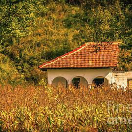 Claudia M Photography - Rural Romania