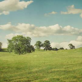 Suzanne Harford - Rural Summer