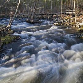 David Freuthal - Rushing waters