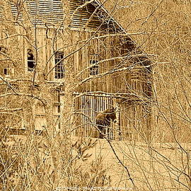 Doron Warren - Rustic Barn with Mule in Sepia
