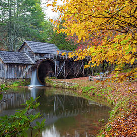 Amy Jackson - Rustic Mill