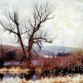 Janine Riley - Rustic reflections