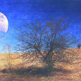 Anna Louise - Rustic Winter Prairie