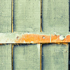 Rusty hinge - Tom Gowanlock